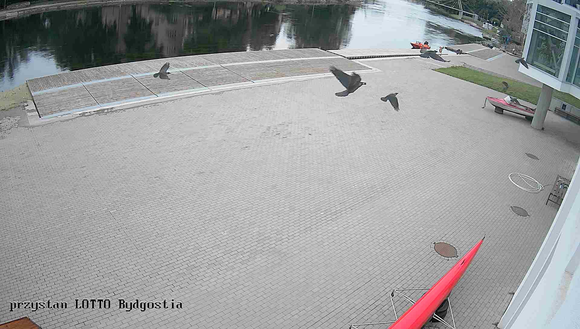 Przystań LOTTO-Bydgostia Bydgoszcz - widok z kamery